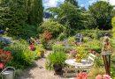 Zonnig tuinenweekend na dagen met neerslag