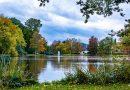 Wilhelminapark een groot kleurenpalet