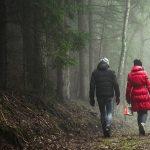 Wandelen voor 60+ en alle andere natuurliefhebbers