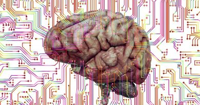 Boris Konrad; het geheim van je brein